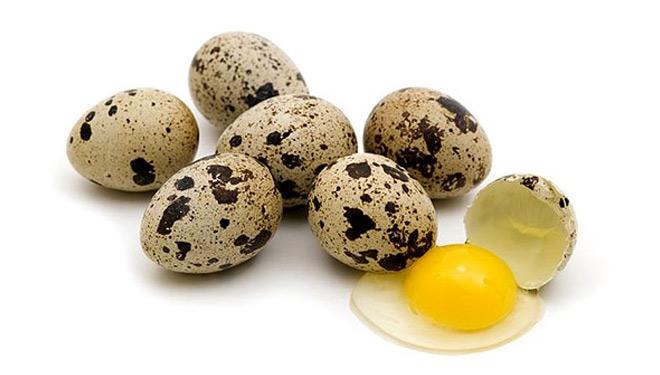 Telur Puyuh Enak Dikonsumsi Namun Berlebihan Bisa Beresiko Bagi Kesehatan Tubuh